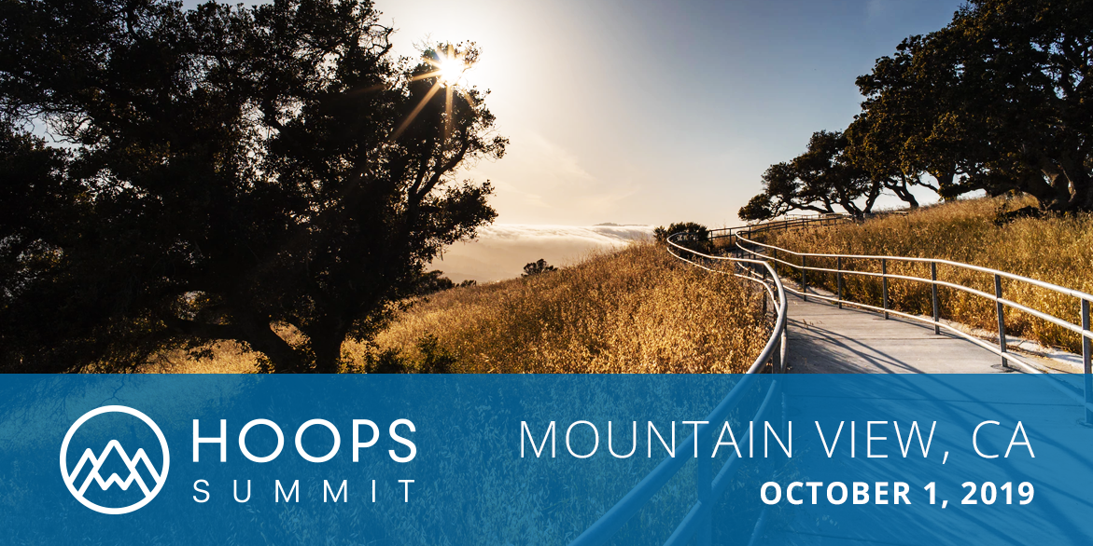 MTN View CA Summit Banner
